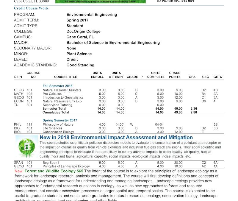Student Grade Report Sample